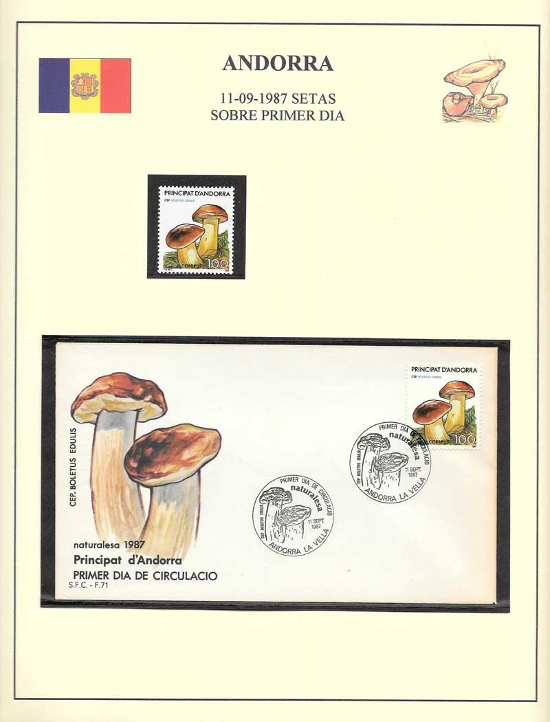 Andorra champiñons  sobre