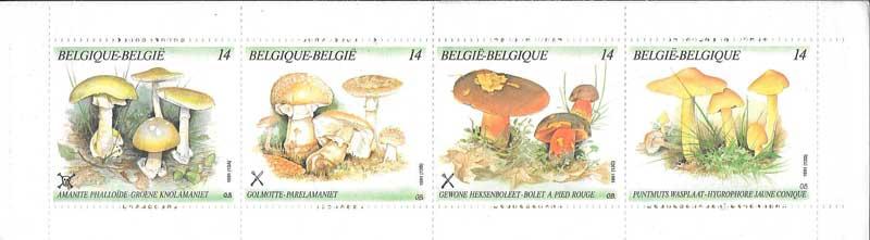 carnet de hongos de BÉLGICA 1991