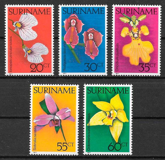 filatelia orquideas Surinam 1977